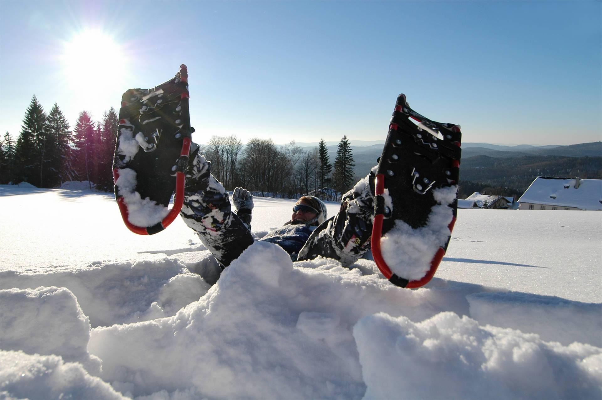 Wanderung mit den Schneeschuhen durch die Wildnis