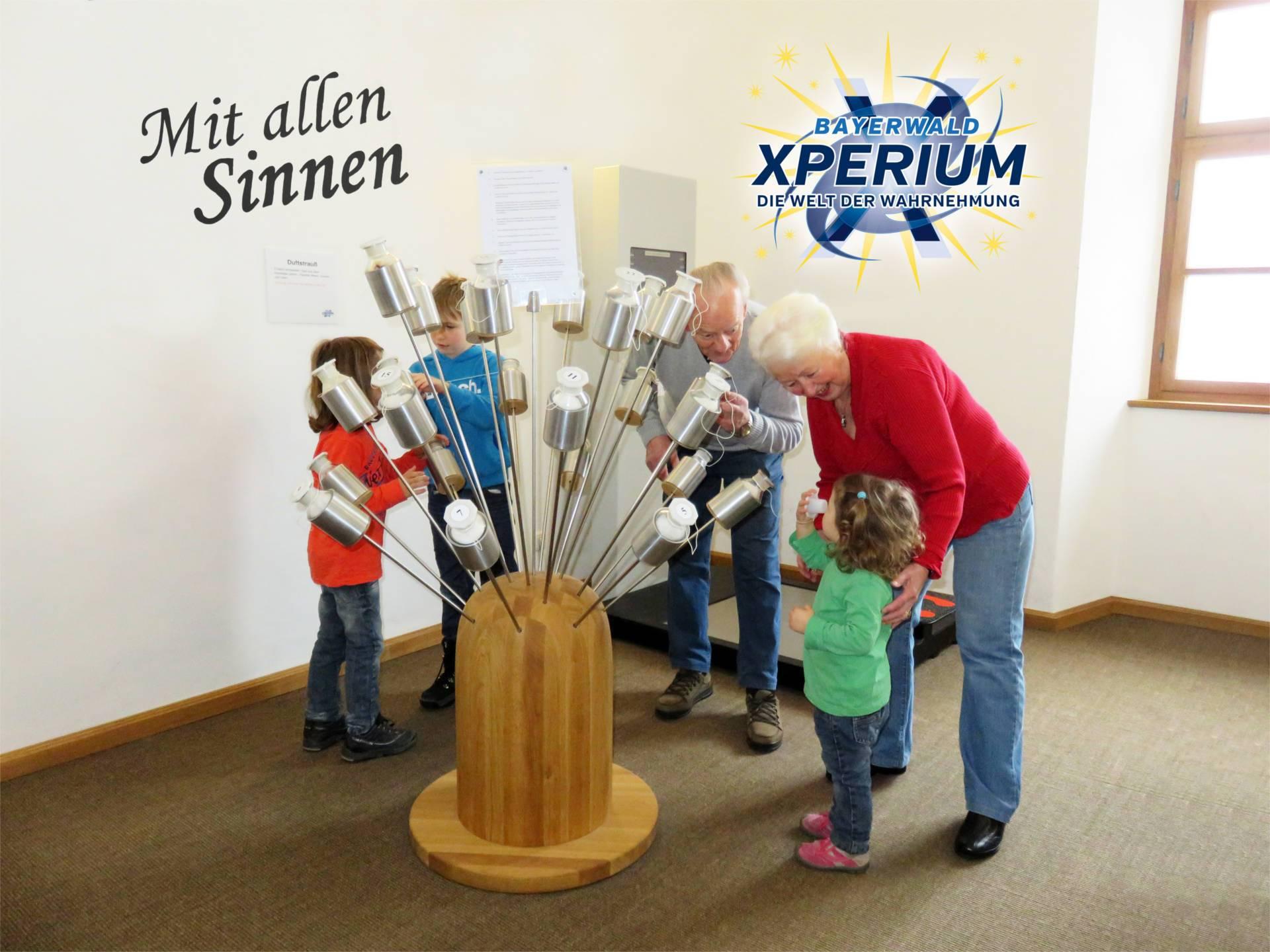 Bayerwald Xperium GmbH